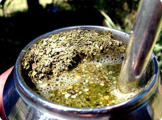 чай мате свойства
