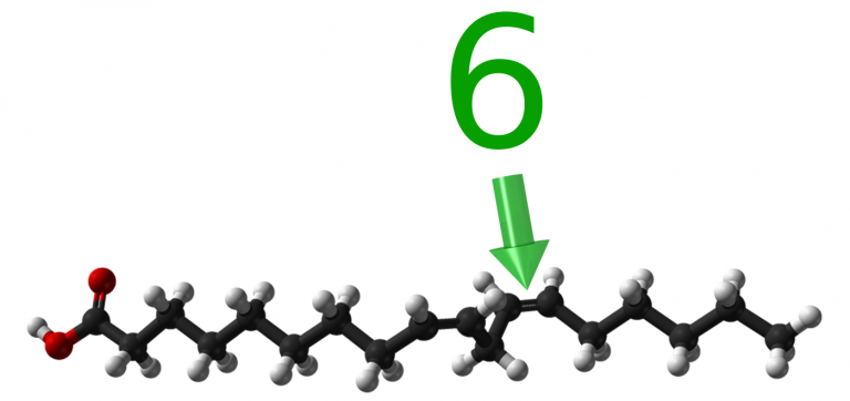 Omega3 fatty acid  Wikipedia