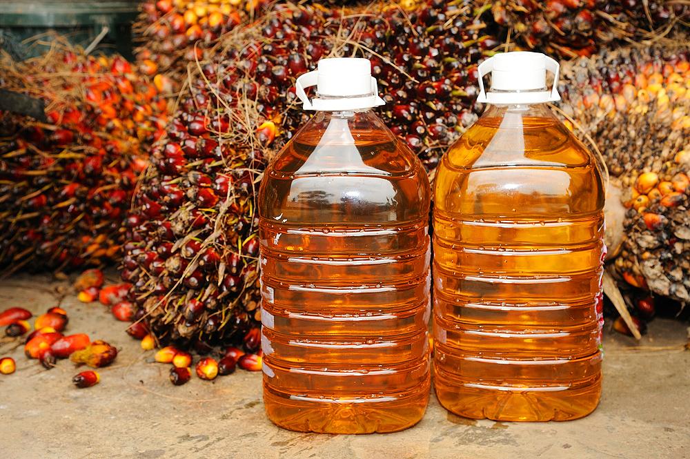 Пальмовое масло в канистрах